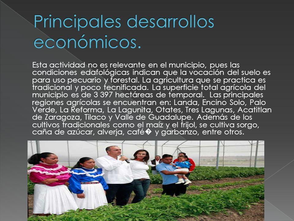 Principales desarrollos económicos.