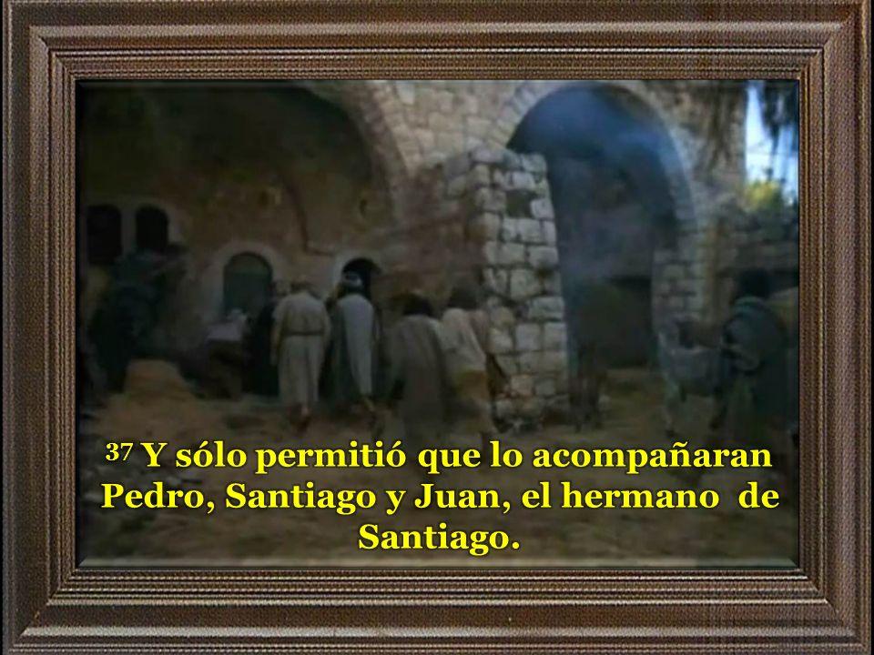 37 Y sólo permitió que lo acompañaran Pedro, Santiago y Juan, el hermano de Santiago.