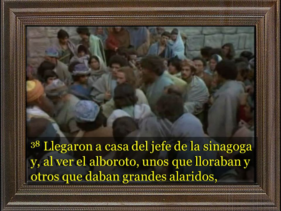 38 Llegaron a casa del jefe de la sinagoga y, al ver el alboroto, unos que lloraban y otros que daban grandes alaridos,