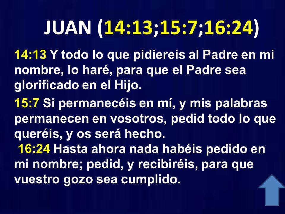 JUAN (14:13;15:7;16:24) 14:13 Y todo lo que pidiereis al Padre en mi nombre, lo haré, para que el Padre sea glorificado en el Hijo.