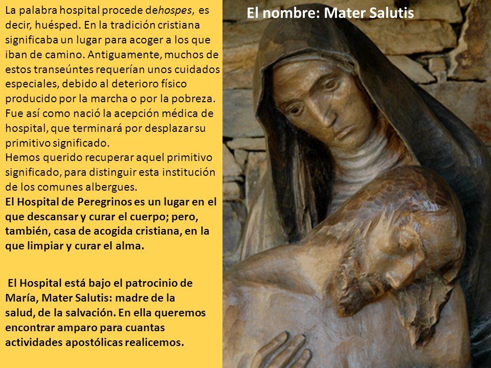 El nombre: Mater Salutis