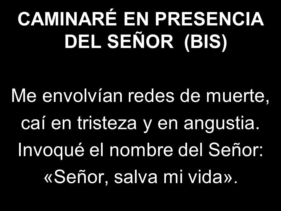 CAMINARÉ EN PRESENCIA DEL SEÑOR (BIS)