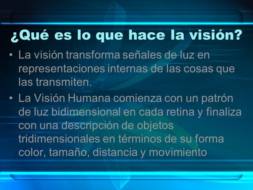 ¿Qué es lo que hace la visión