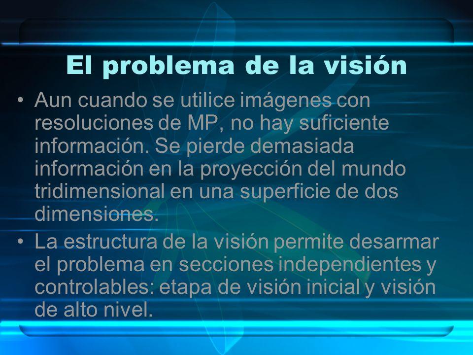 El problema de la visión
