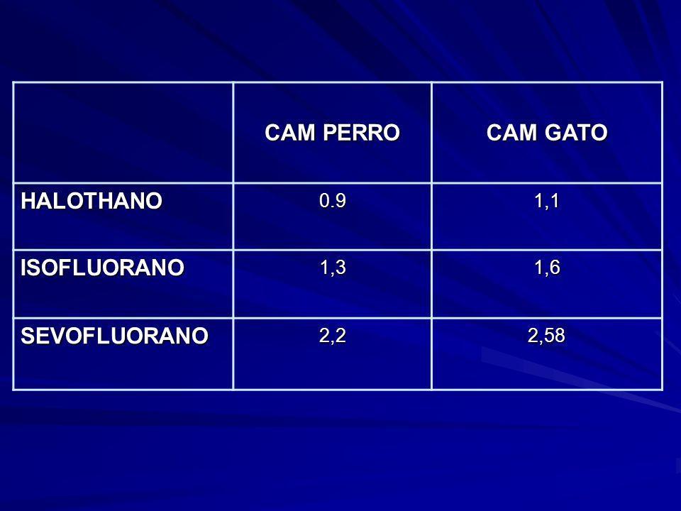 CAM PERRO CAM GATO HALOTHANO ISOFLUORANO SEVOFLUORANO 0.9 1,1 1,3 1,6