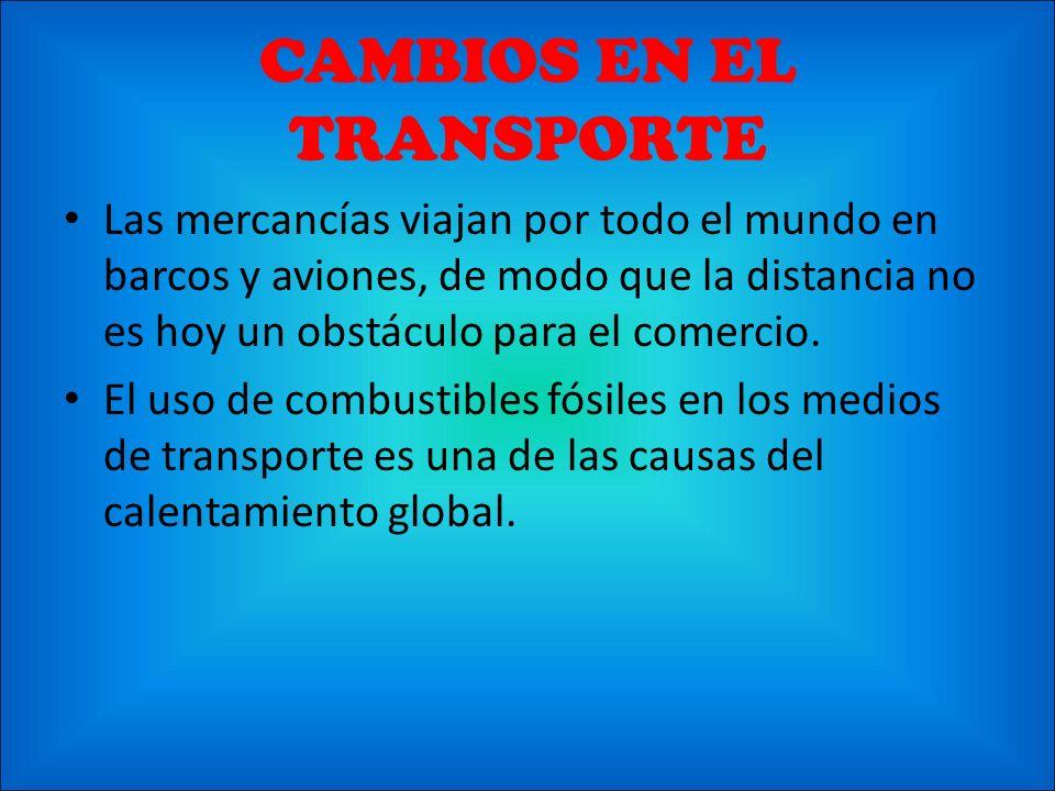 CAMBIOS EN EL TRANSPORTE