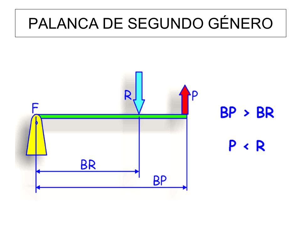 PALANCA DE SEGUNDO GÉNERO