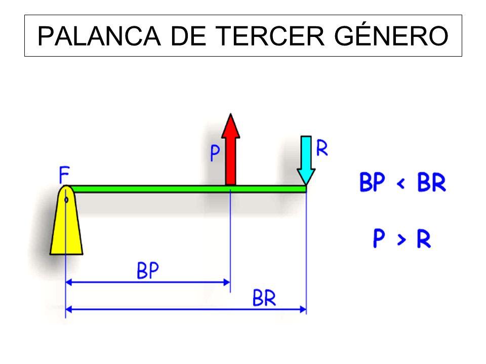 PALANCA DE TERCER GÉNERO