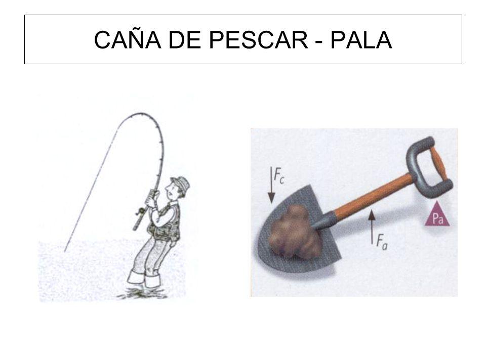 CAÑA DE PESCAR - PALA