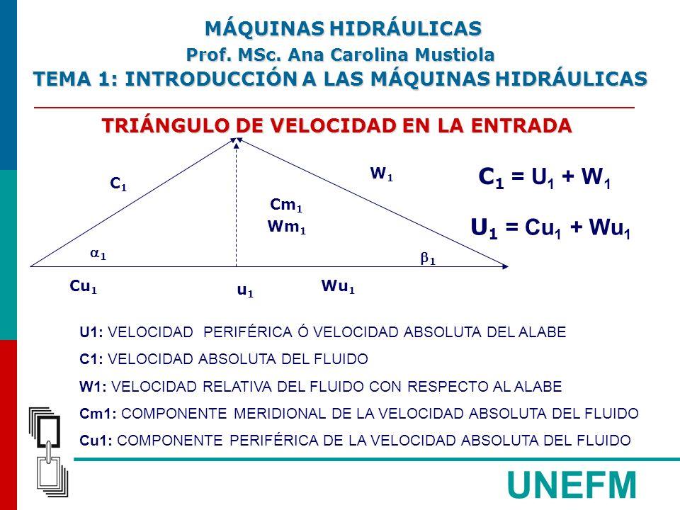 MÁQUINAS HIDRÁULICAS Prof. MSc. Ana Carolina Mustiola. TEMA 1: INTRODUCCIÓN A LAS MÁQUINAS HIDRÁULICAS.