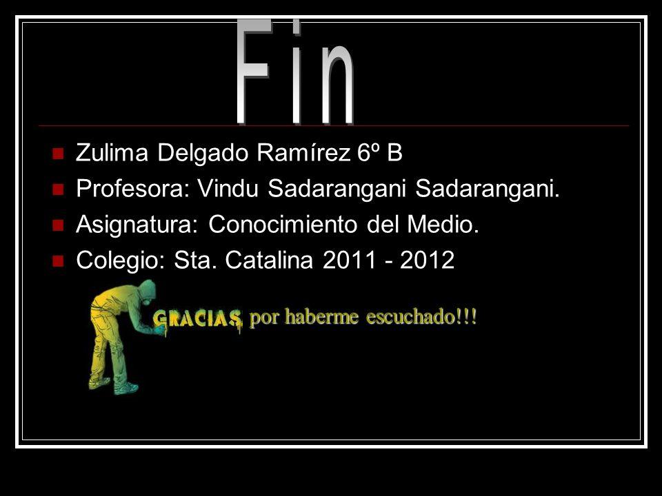 Fin Zulima Delgado Ramírez 6º B