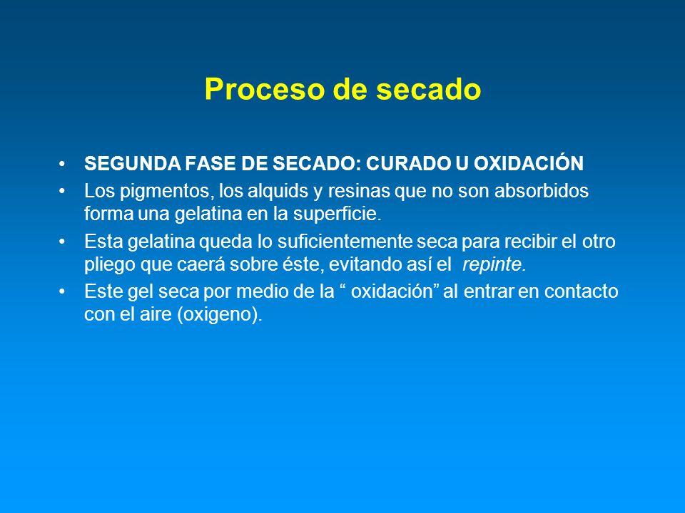 Proceso de secado SEGUNDA FASE DE SECADO: CURADO U OXIDACIÓN