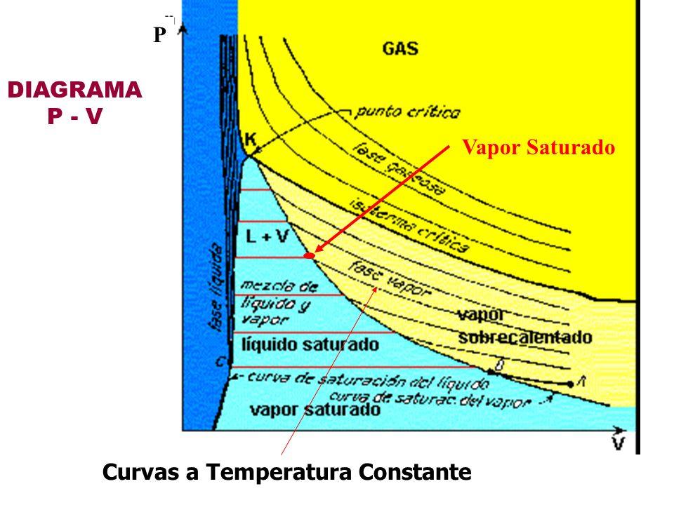 P DIAGRAMA P - V Vapor Saturado Curvas a Temperatura Constante