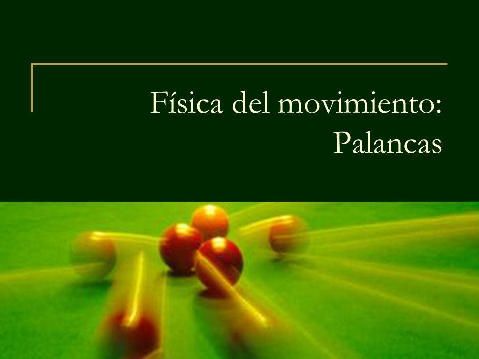 Física del movimiento: Palancas