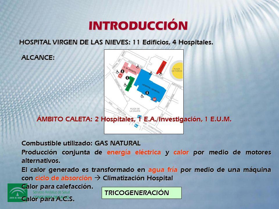 INTRODUCCIÓN HOSPITAL VIRGEN DE LAS NIEVES: 11 Edificios, 4 Hospitales. ALCANCE: ÁMBITO CALETA: 2 Hospitales, 1 E.A./Investigación, 1 E.U.M.