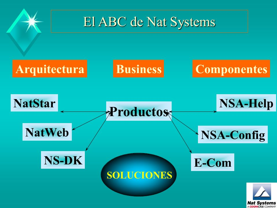 El ABC de Nat Systems Productos Componentes Arquitectura Business