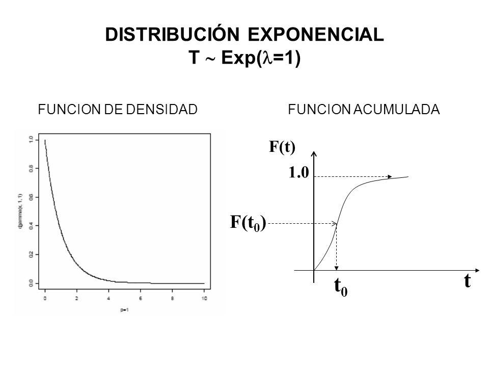 DISTRIBUCIÓN EXPONENCIAL T  Exp(=1)