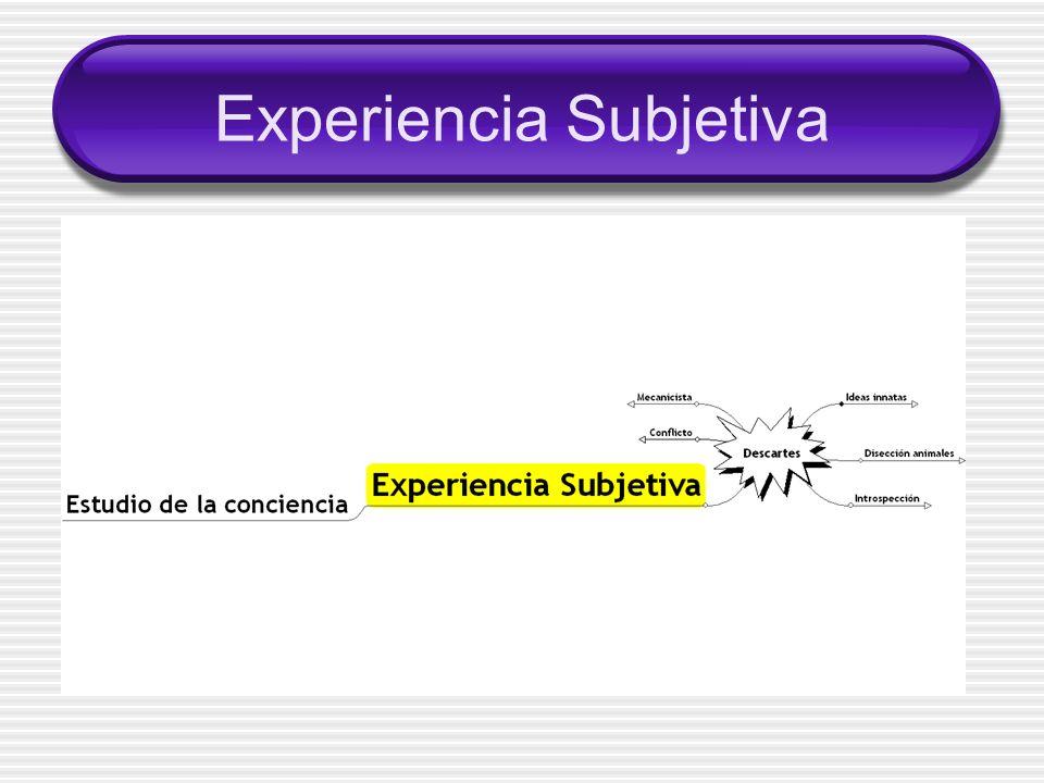 Experiencia Subjetiva