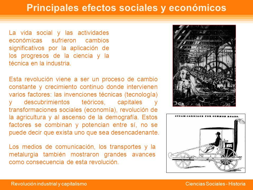 Principales efectos sociales y económicos