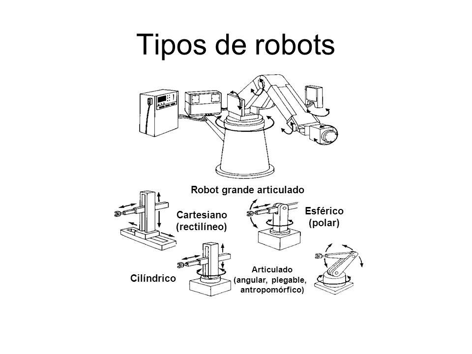 Robot grande articulado