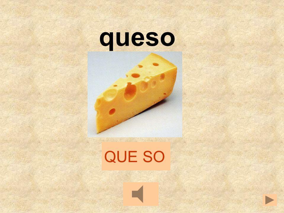queso QUE SO