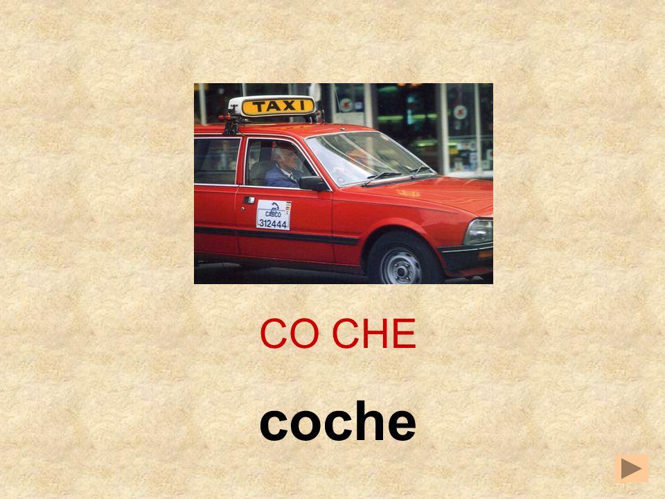 CO CHE coche