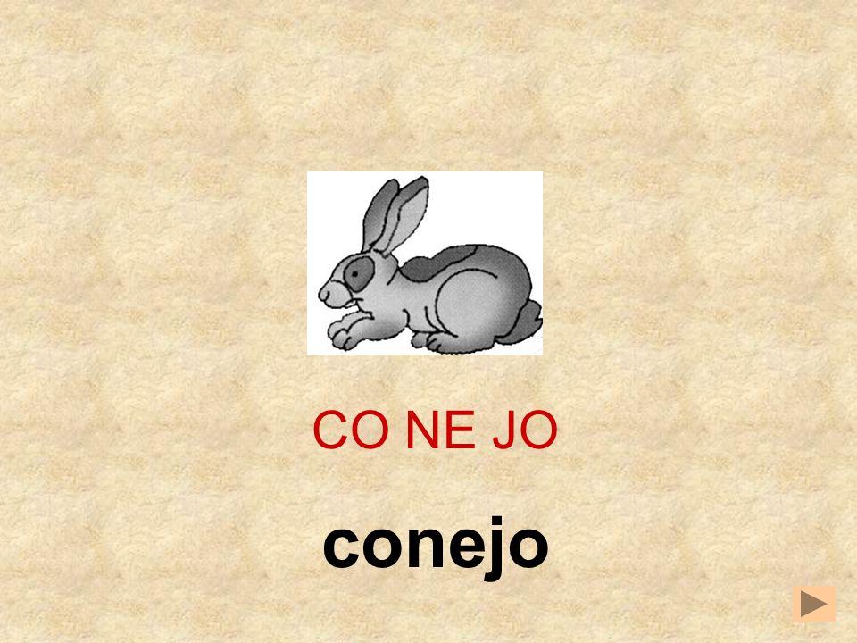 CO NE JO conejo