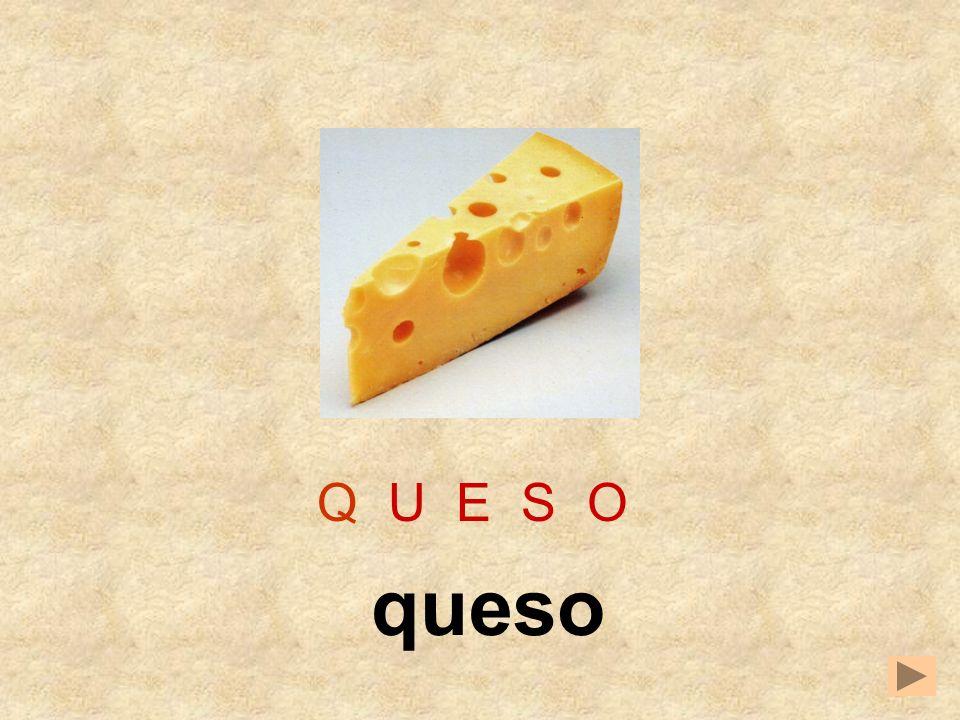 Q U E S O queso