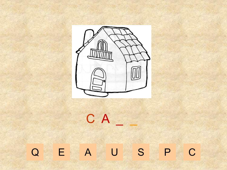 C A _ _ Q E A U S P C