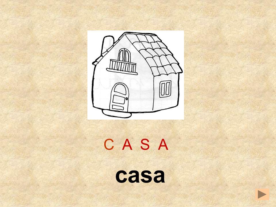 C A S A casa