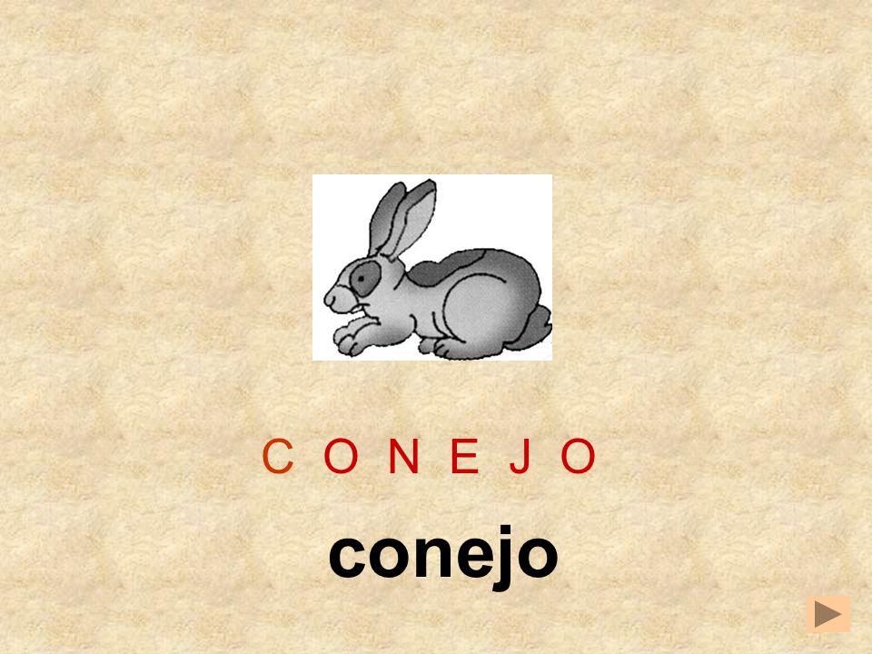 C O N E J O conejo