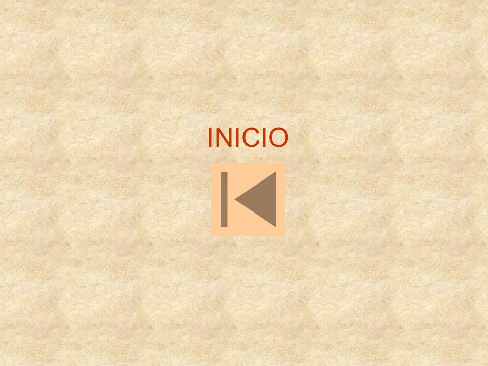 INICIO