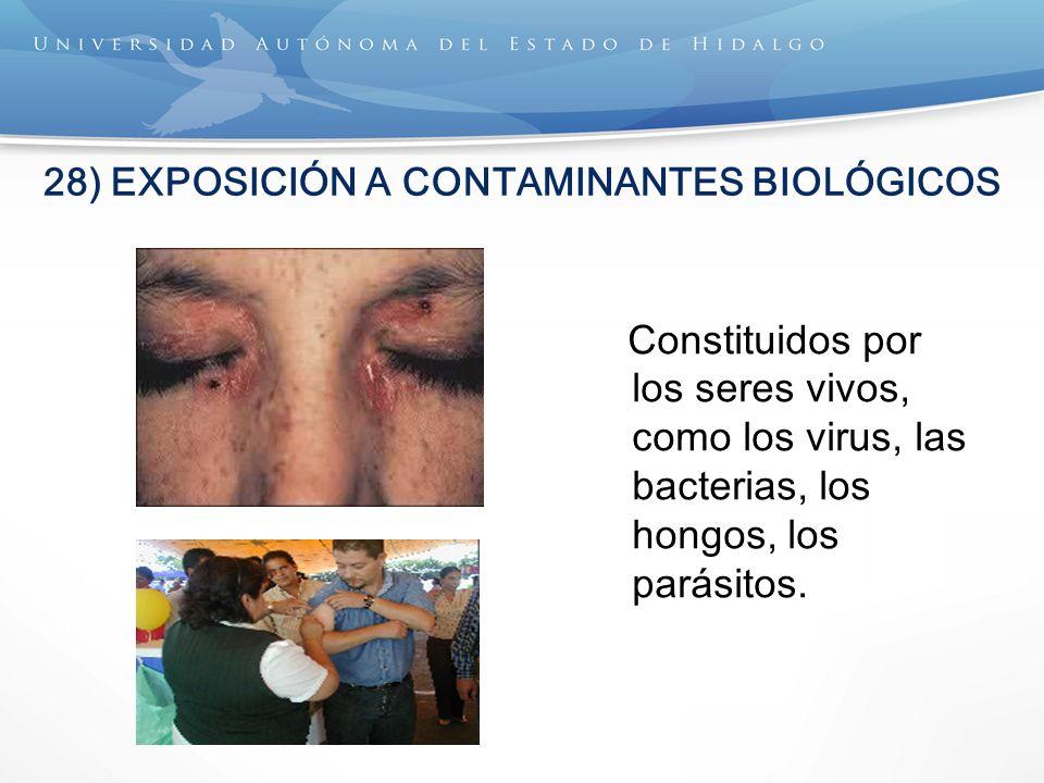 28) EXPOSICIÓN A CONTAMINANTES BIOLÓGICOS