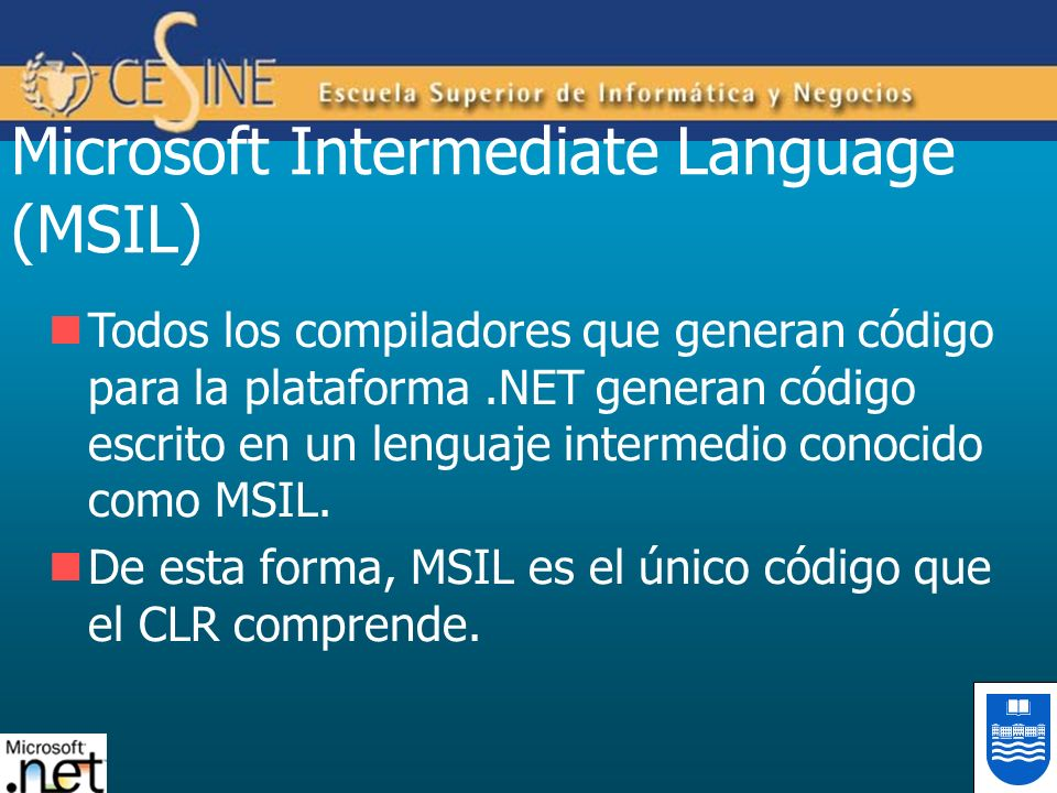 Microsoft Intermediate Language (MSIL)