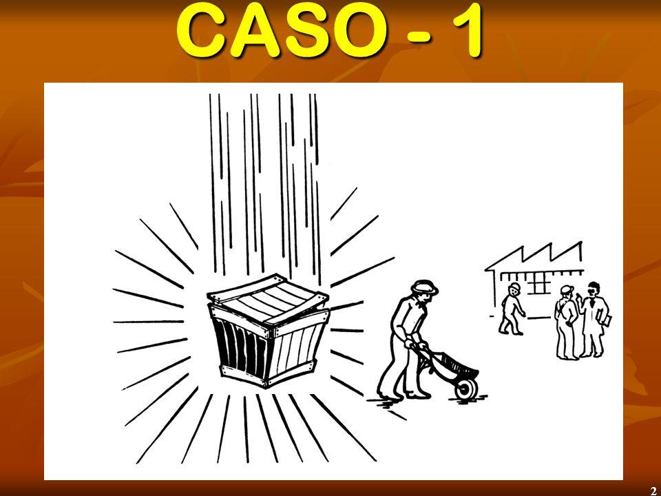 CASO - 1