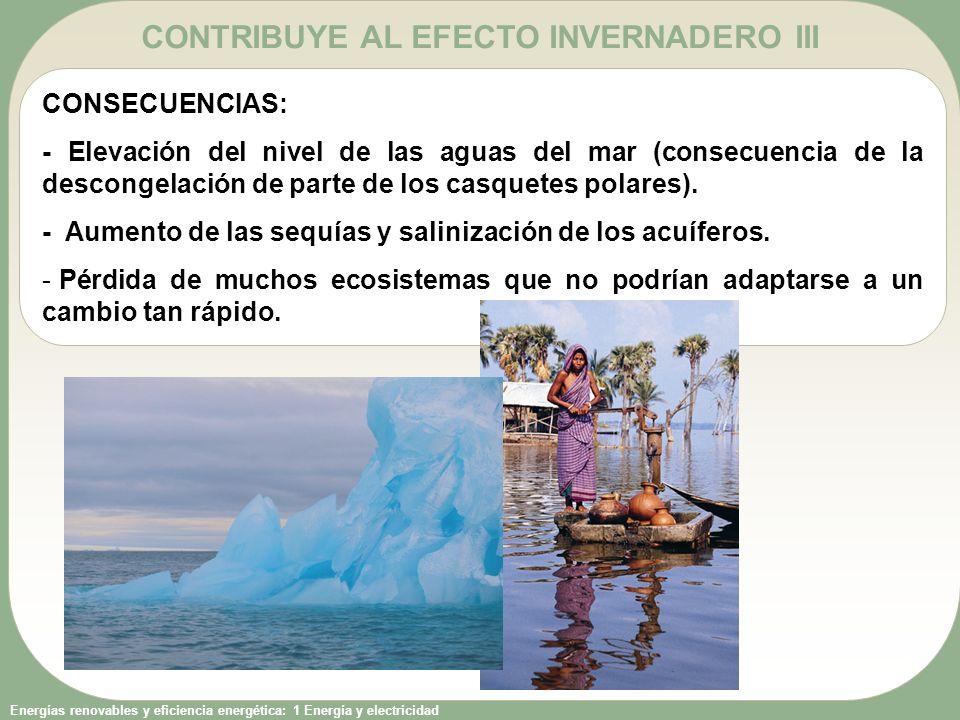 CONTRIBUYE AL EFECTO INVERNADERO III