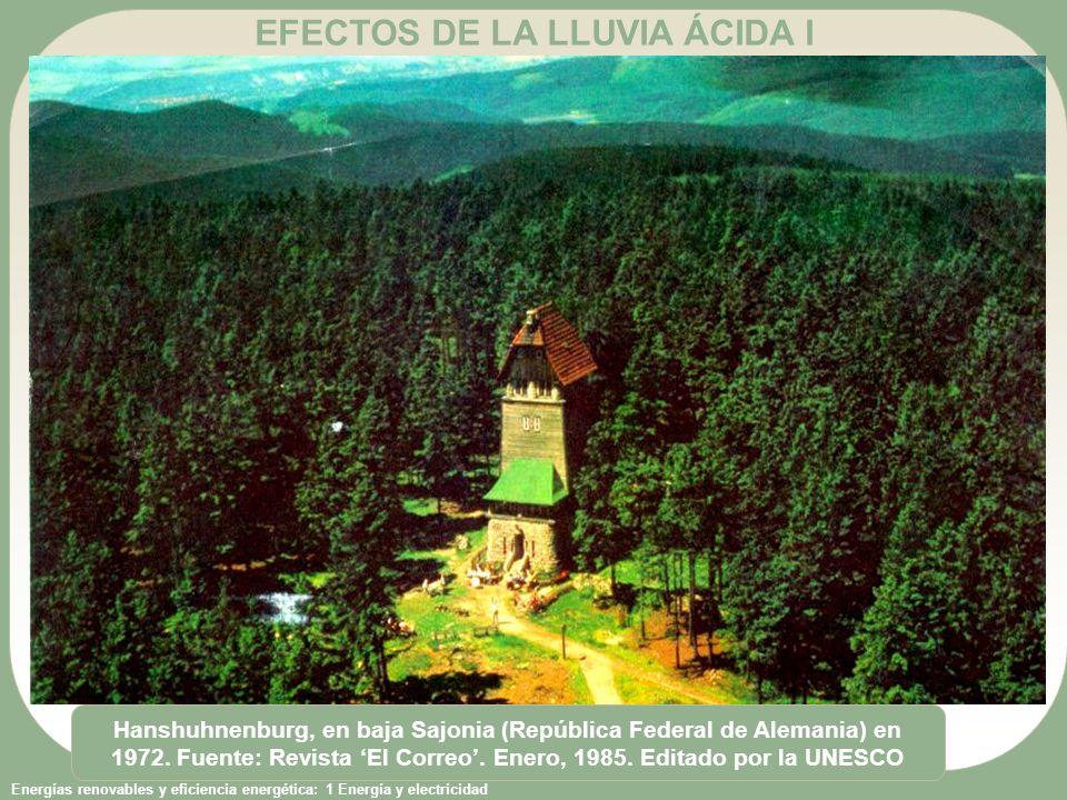 EFECTOS DE LA LLUVIA ÁCIDA I