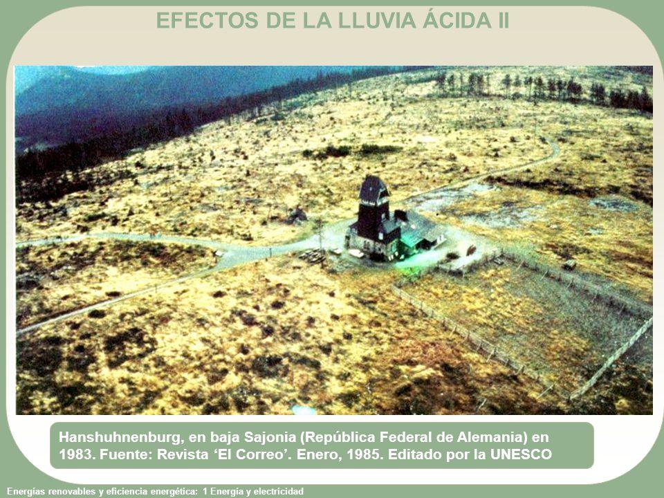EFECTOS DE LA LLUVIA ÁCIDA II