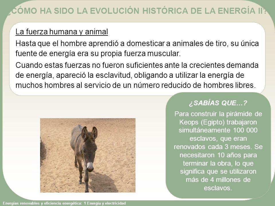 ¿CÓMO HA SIDO LA EVOLUCIÓN HISTÓRICA DE LA ENERGÍA II