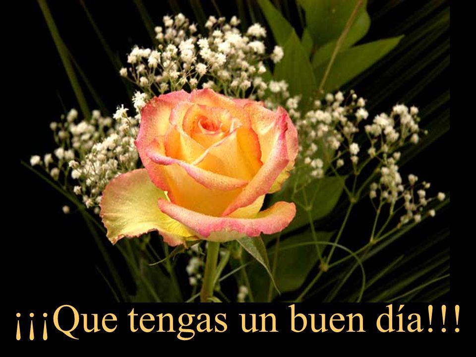 ¡¡¡Que tengas un buen día!!!