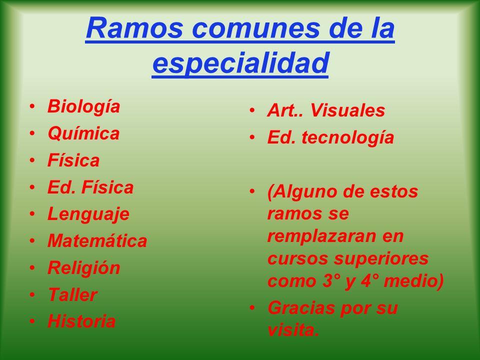 Ramos comunes de la especialidad