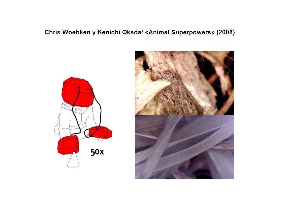 Chris Woebken y Kenichi Okada/ «Animal Superpowers» (2008)