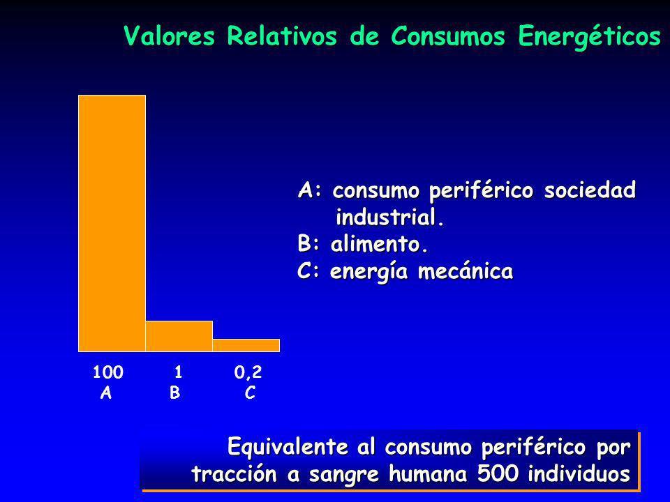 Valores Relativos de Consumos Energéticos