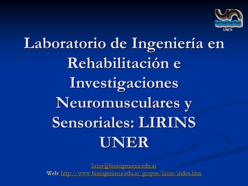 Web: http://www.bioingenieria.edu.ar/grupos/lirins/index.htm