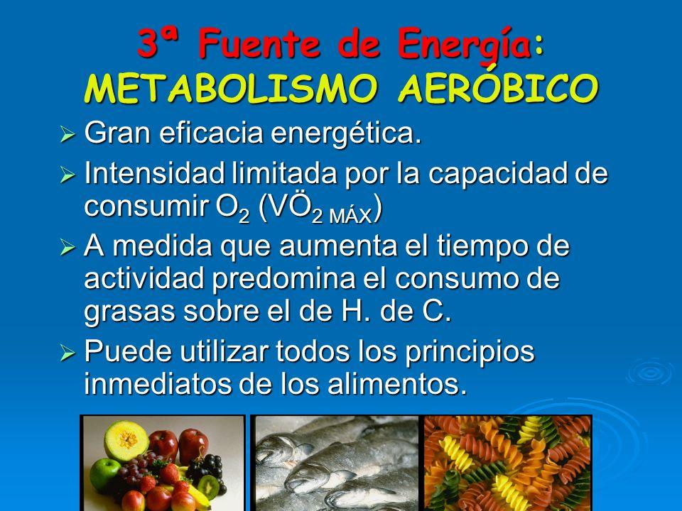 3ª Fuente de Energía: METABOLISMO AERÓBICO