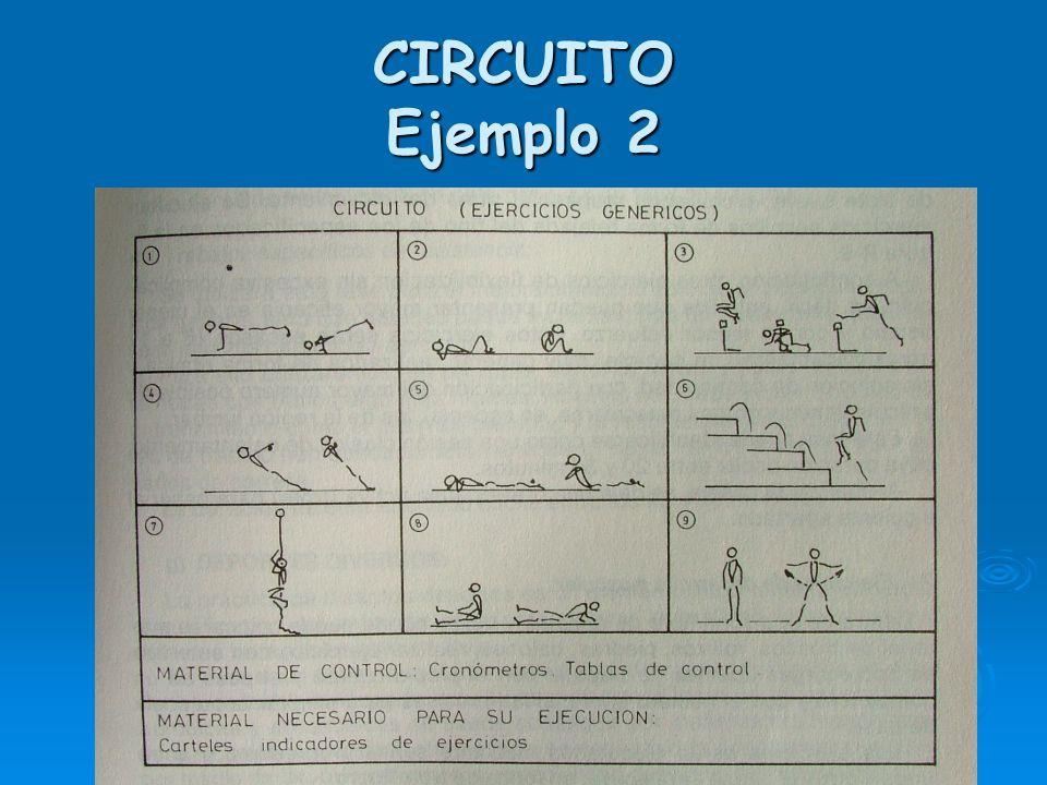 CIRCUITO Ejemplo 2