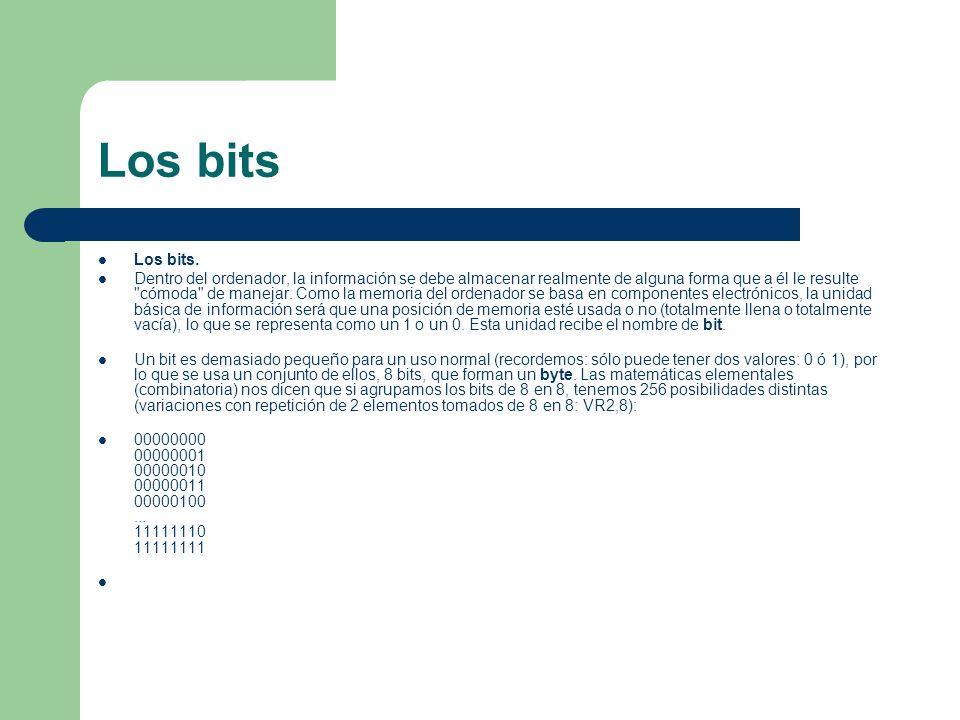 Los bits Los bits.