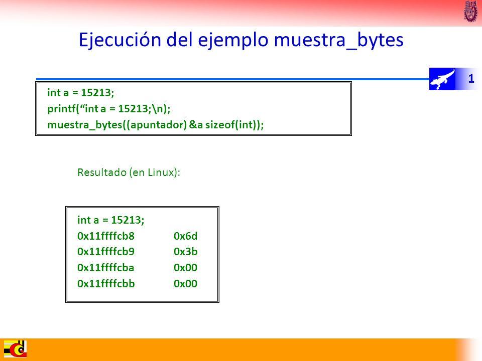 Ejecución del ejemplo muestra_bytes