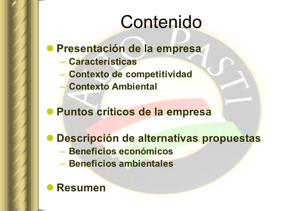 Contenido Presentación de la empresa Puntos críticos de la empresa