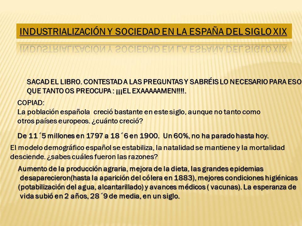 INDUSTRIALIZACIÓN Y SOCIEDAD EN LA ESPAÑA DEL SIGLO XIX
